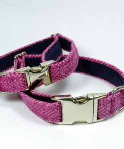 Rose - Collier de chien. Harris Tweed.Luxe.