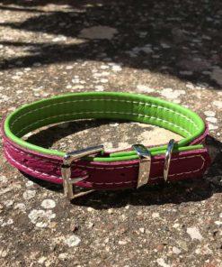 Colliers et laisses pour chiens en cuir de luxe rose et vert