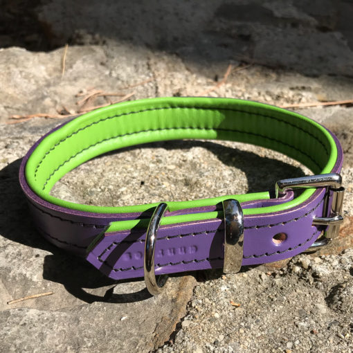 Colliers et laisses pour chiens en cuir de luxe vert et violet