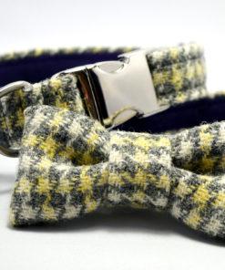 Collier de luxe pour chien. Tweed